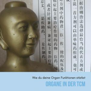 Organe in der TCM