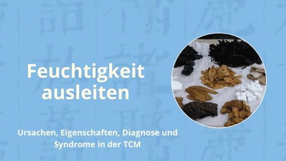 Feuchtigkeit ausleiten mit der TCM