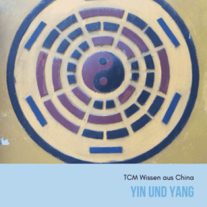 online kurs lerne über yin und yang