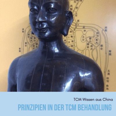 Prinzipien in der TCM Behandlung