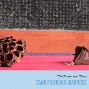 Zang Fu Organ Diagnose