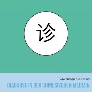 Diagnose in der Chinesischen Medizin